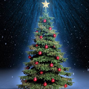 general-christmas-tree-wallpapers-and-backgrounds-w8themes-superb-christmas-tree-wallpapers-background