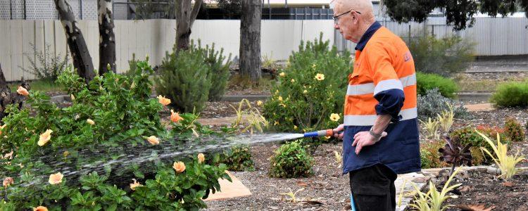 Man in high vis watering garden